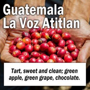 Guatemala La Voz Atitlan