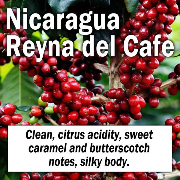 Nicaragua Reyna del Cafe