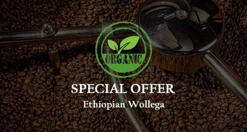 SPECIAL: Ethiopian Wollega